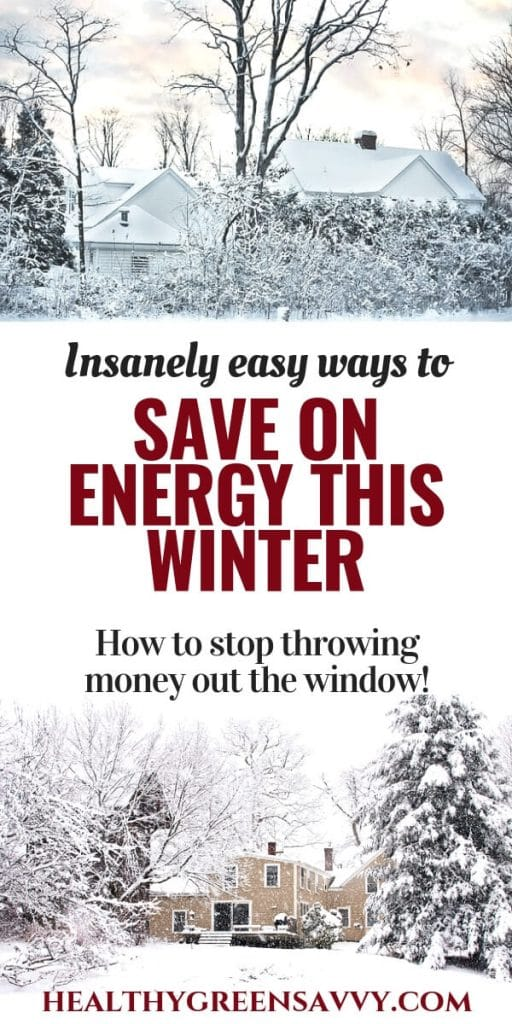 energy saving tips -- pin with title text and photos of homes in snowy woods