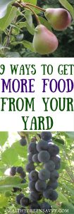 Short on space? A little creative thinking can help you get a lot more food from your yard. Click to read more or pin to save for later!