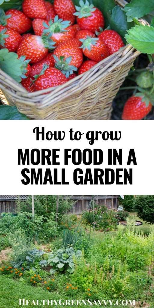 pin with photos of strawberries and a vegetable garden with title text
