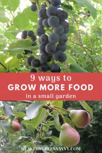 Grow food everywhere! Short on space? A little creative thinking can help you get a lot more food from your yard. These 9 strategies help me grow a TON of food in a very small space. #smallspacegardening #intensivegardening #garden #gardentips #ediblelandscaping #growyourown #growfood #permaculture #urbanfarming #urbangarden #gardeningideas
