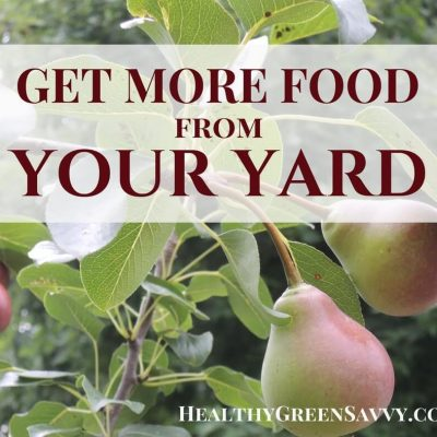 Short on space? A little creative thinking can help you get a lot more food from your yard. Click to read more or pin to save for later! |edible landscaping | permaculture | small space gardening |