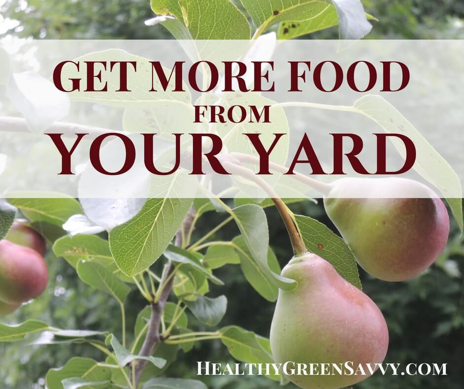 9 Ways to Grow Food in a Small Garden