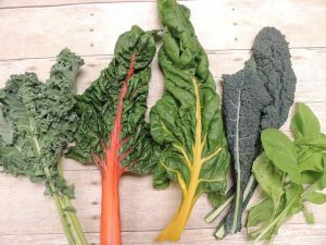 growing your own food -- photo of kale, chard, and arugula leaves