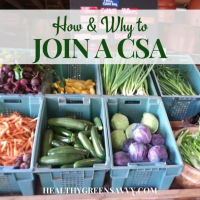 cover photo of CSA farm share with title text overlay