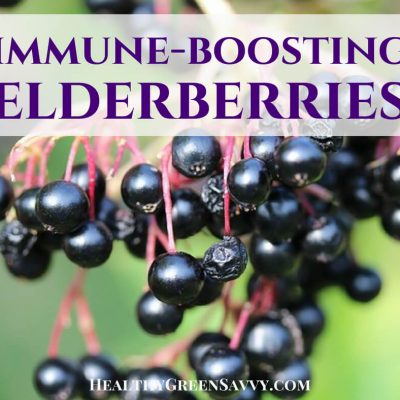 Benefits of elderberries: Immune-boosting elderberries are a tasty way to fend off illness. Check out these recipes for homemade tea, syrup, gummies, and more. Click to read more or pin to save for later! #homeremedies #elderberryrecipes #elderberry #immuneboosters