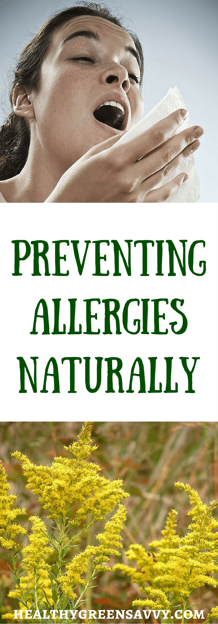 Natural remedies for seasonal allergies healthygreensavvy for Fish allergy home remedy