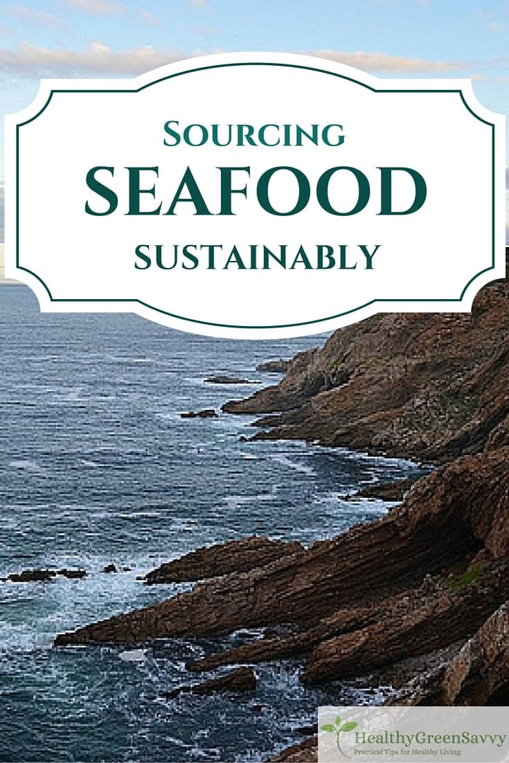 Sustainable Seafood ~ How to Find Planet-Friendly Fish