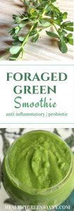 This anti-Inflammatory smoothie recipe uses the superfood/weed purslane as well as ginger and turmeric for a not-too-sweet, oh-so-healthy smoothie. Click to read more or pin to save for later! | foraged food | probiotic | healthy recipes | green smoothie |