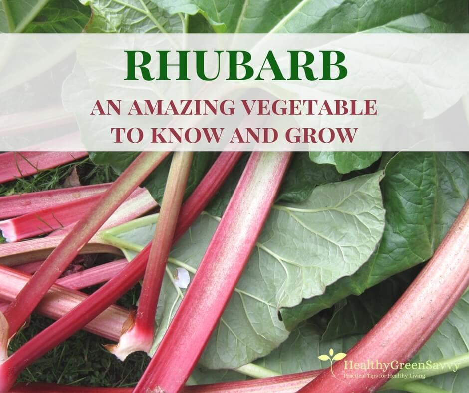 Amazing Rhubarb Recipes to Celebrate Spring