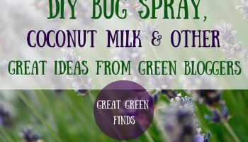Summer's the time to DIY some bugspray! Plus, great green finds from around the blogosphere! Click to read more or pin to save for later.
