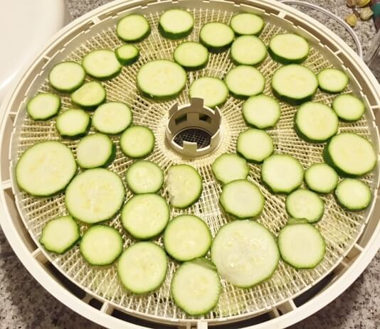 Dehydrating food food preservation for total novices dehydrating food zucchini ready to get dehydrated into yummy chips forumfinder Gallery