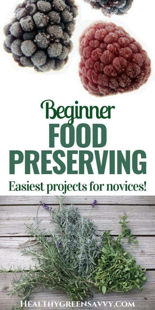 Food preservation methods -- pin showiing dried herbs and frozen berries with title text