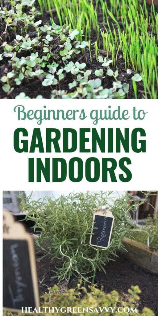 grow vegetables indoors -- photos of herbs and seedlings growing in containers with title text
