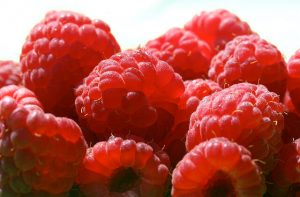 healthy treats -- closeup of raspberries