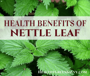 benefits of nettle tea -- closeup of nettle leaves with title text overlay