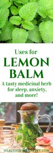 Uses for lemon balm: Lemon balm is far and away my favorite herb for better sleep! This amazing plant deserves a place in your garden and herbal remedy arsenal. Click to find out the fantastic uses for lemon balm! #lemonbalm #medicinalplants #sleep #herbalremedies #naturalremedies
