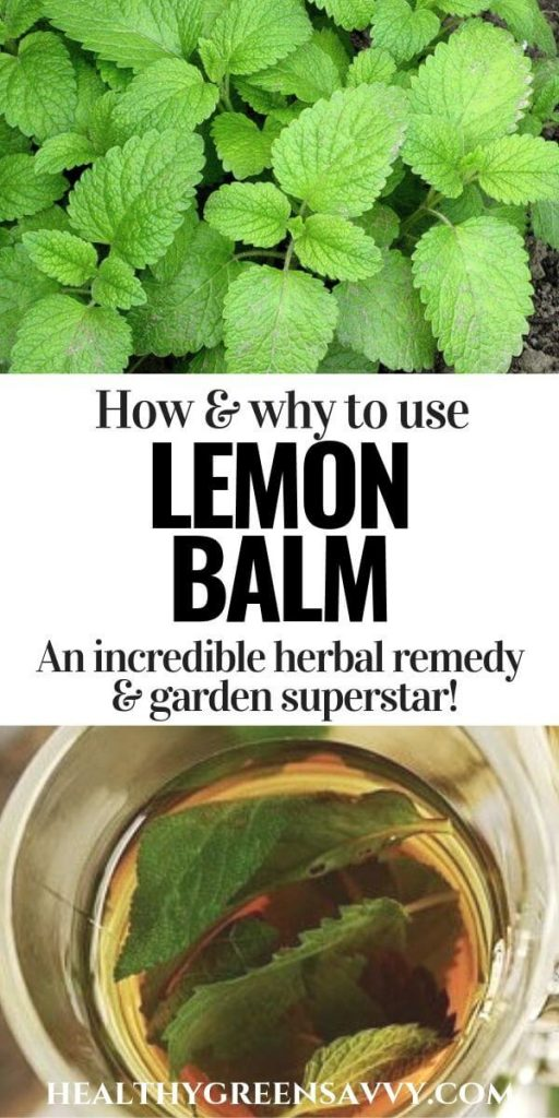 pin with photos of lemon balm leaves and lemon balm tea brewing in cup plus title text