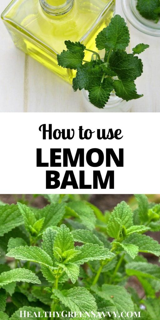 pin with photos of lemon balm leaves plus title text