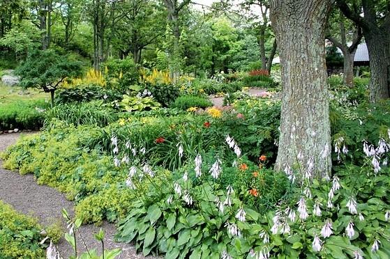 eco friendly landscaping - Eco Friendly Landscaping JamesDeMers (1) - HealthyGreenSavvy