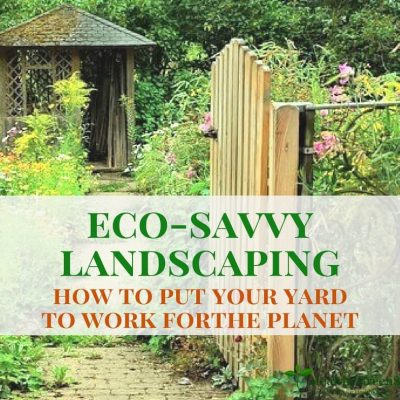 Eco Friendly Landscaping: How to Put Your Yard to Work for the Planet