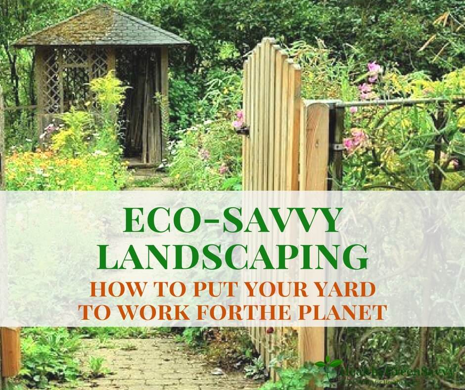 How to Put Your Yard to Work for the Planet ~ Eco Friendly Landscaping
