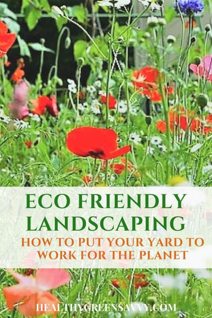 Ecological landscaping -- pin with wildflowers and title text overlay