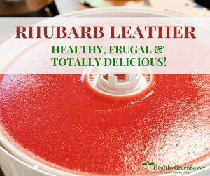 Photo of homemade rhubarb leather!