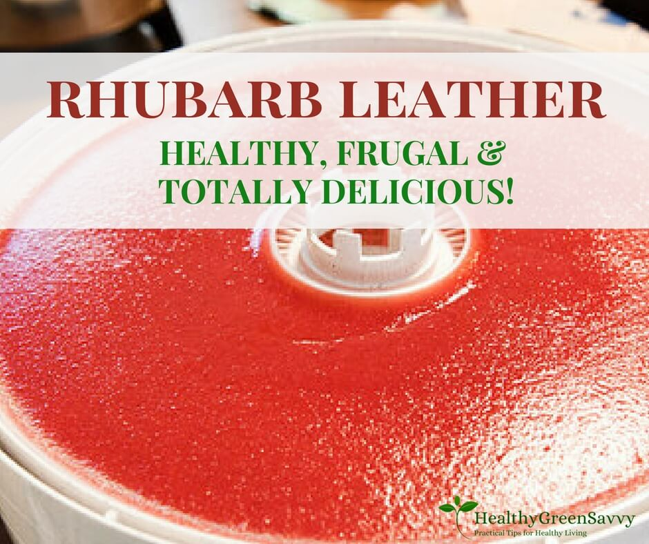 Homemade Fruit Leather from Rhubarb!