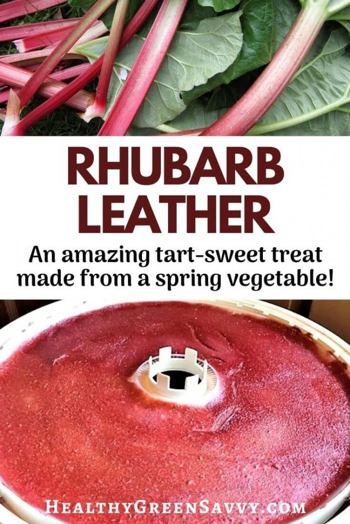 pin with photos of homemade fruit leather with rhubarb and rhubarb stalks plus title text
