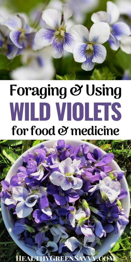 photo of edible wild violets growing and in bowl with title text