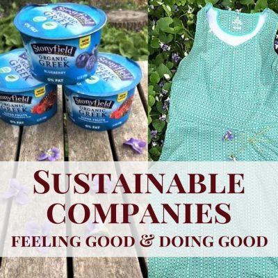 Feeling Good and Doing Good ~ Why to Support Sustainable Companies