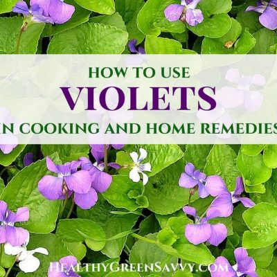 How to Use Wild Violets in Your Kitchen