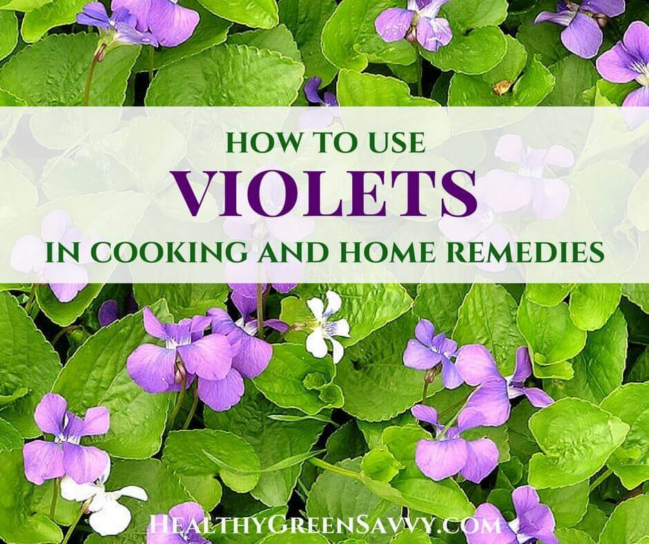 Wild Violets: Incredible Uses for Garden, Kitchen & Remedies!