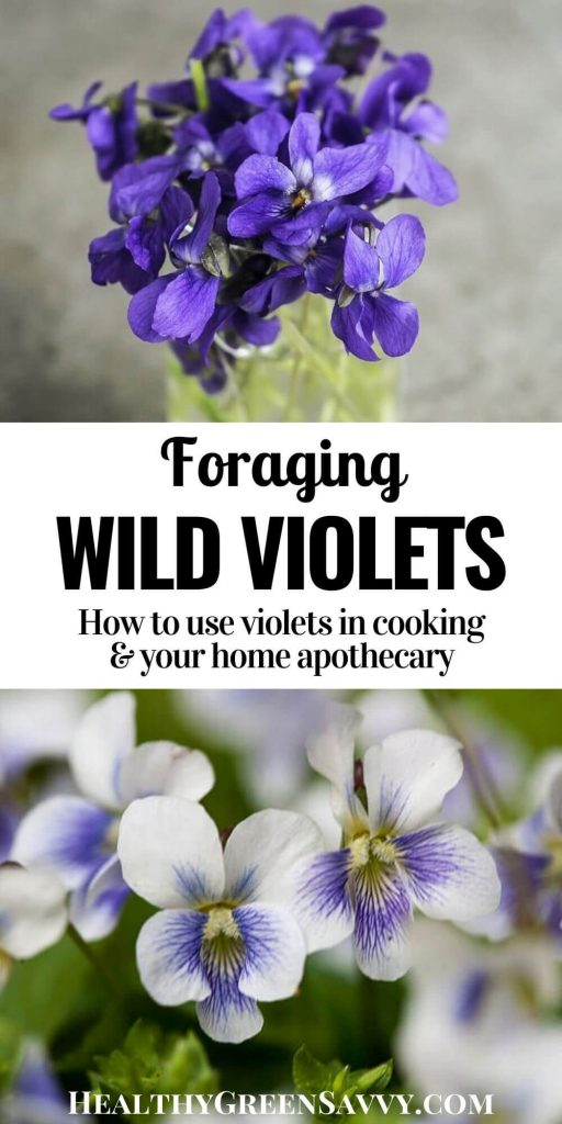 pin with photos of edible wild violets growing and in vase with title text