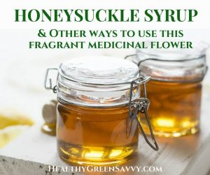 honeysuckle recipes -- cover with photo of honeysuckle syrup