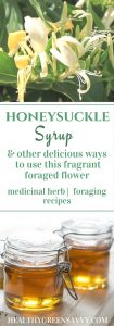 Honeysuckle recipes ~ This fragrant flower not only has excellent medicinal properties, it tastes delicious! Learn how to use it in your kitchen and home remedy arsenal. Click to read more or pin to save for later.
