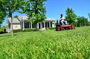 photo of man on riding lawn mower mowing front yard