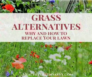 Grass alternatives -- photo of meadow with title text overlay