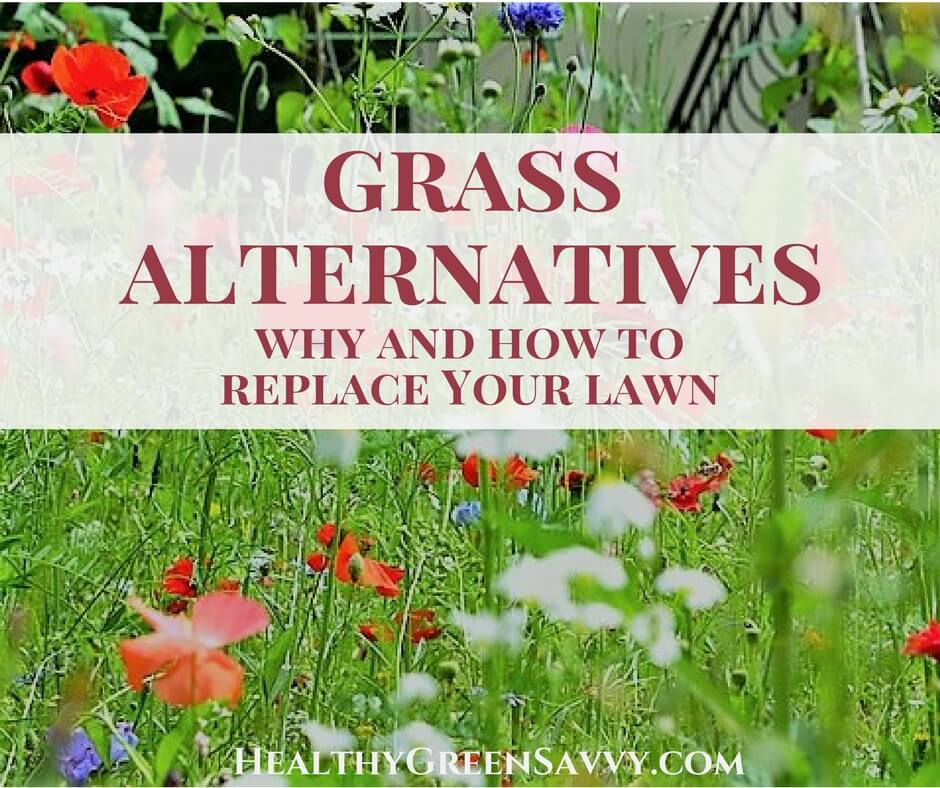 Grass Alternatives ~ Why and How to Replace Your Lawn