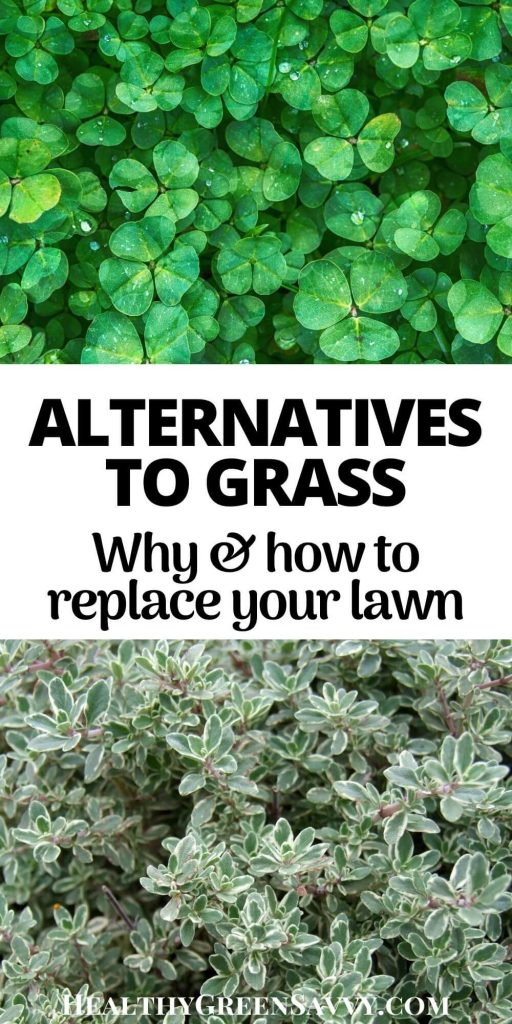 pin with photos of grass alternatives and title text