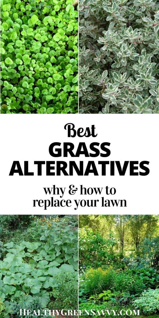 pin with title text and photos of grass alternatives