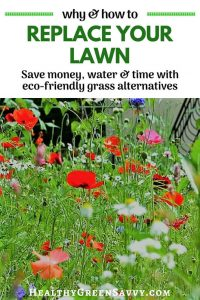 Grass alternatives save you money, time, and water, while reducing greenhouse gas emissions. Find out how easy it is to convert some of your lawn to grass alternatives! #ecofriendly #gardening #ecologicallandscaping #greenliving #grassalternatives #lawnalternatives #ecofriendlyyard