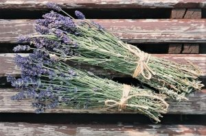 How to Use Essential Oils -- bundles fo dried lavender