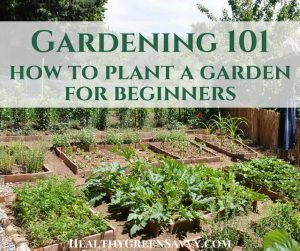 Gardening 101 ~ How To Plant A Garden, Even If Youu0027ve Never Grown