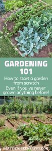 Gardening 101: How to plant a garden -- pin with photos of raised bed gardens and title text