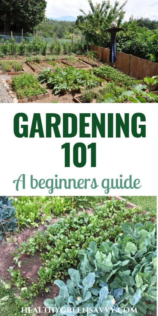 Gardening 101 ~ How to plant a garden -- pin with photos of garden plots with title text