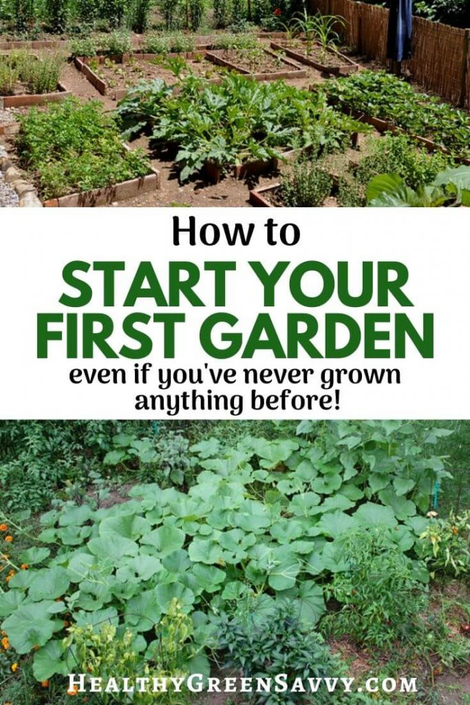 pin with photos of vegetable gardens and title text