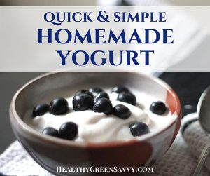 homemade yogurt, how to make yogurt -- closeup of yogurt in bowl with blueberries