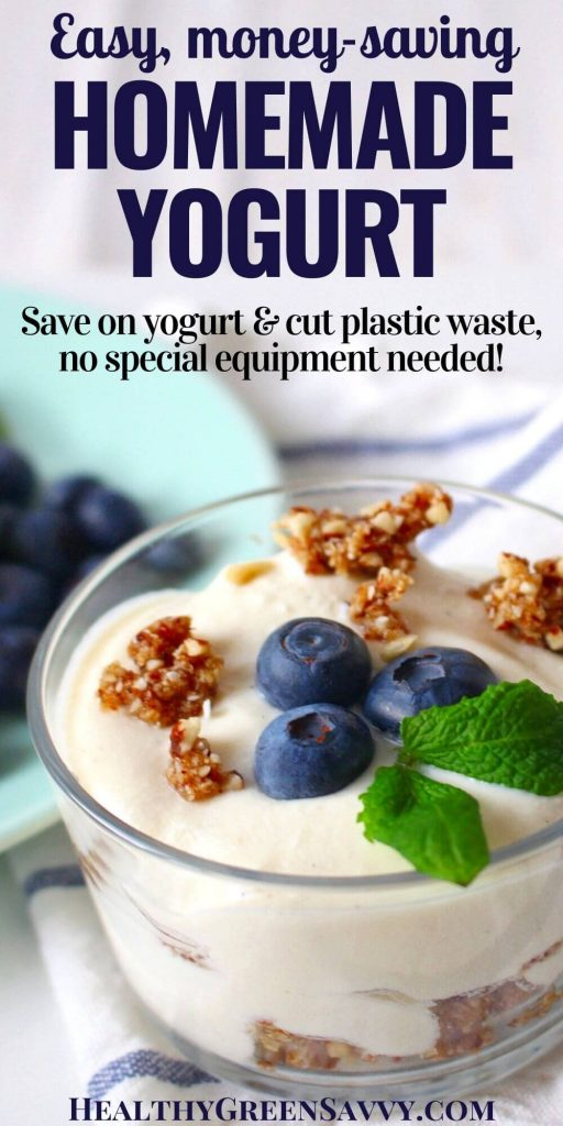 pin with title text and photo of bowl of homemade yogurt with blueberries