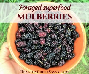 Mulberry recipes ~ cover with photo of bowl of mulberries and title text overlay